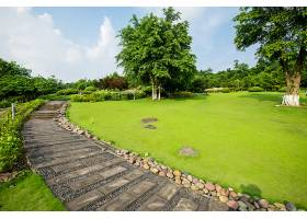 草原景观绿化环境公园背景_114563001