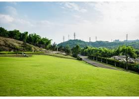 草原景观绿化环境公园背景_114563101