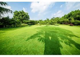 草原景观绿化环境公园背景_114563301
