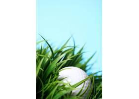 草地上的高尔夫球_694887701