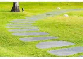 美丽的石径在花园里漫步奔跑_517593901