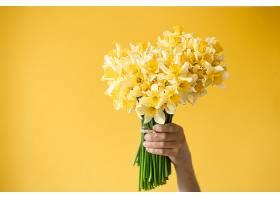 男性手持一束黄色水仙花_1156711301