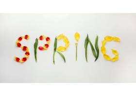 春天的花瓣之字_1247936301