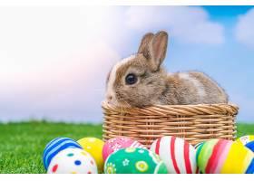 蓝天绿草里的兔子和复活节彩蛋_100992101