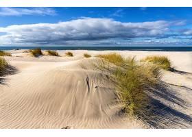 春天里空荡荡的海滩_1230595501