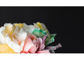 美丽绽放的花朵特写_1255889601