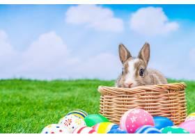 蓝天绿草里的兔子和复活节彩蛋_100992701