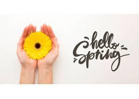 你好春天牵着鲜花走来走去_1247937301