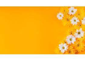 具有临摹空间的美丽春花构图_1206778901