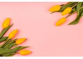 带复印空间的黄色郁金香俯视图组合_1206778201