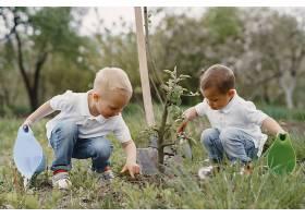 可爱的小男孩在公园里植树_934464201