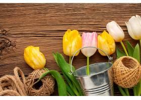 带桶和绳的郁金香花_1247947801