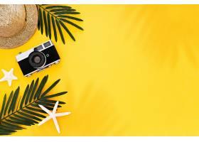 平躺着带旅行者配件热带棕榈叶复古相_429363301