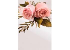 用玫瑰花特写看情人节的概念_1110633101