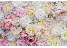 白色和粉红色玫瑰花的美丽背景_376522601
