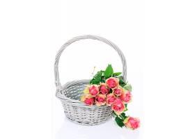 白色背景上放在篮子里的漂亮的粉色玫瑰_1058994801