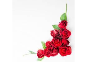 白色背景上的红玫瑰漂亮的玫瑰花_298340301