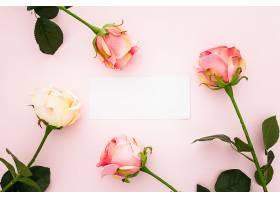 粉红色的玫瑰花和一张空的贺卡_648798101