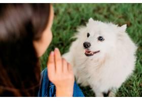 女人抚摸可爱的狗_1089203501