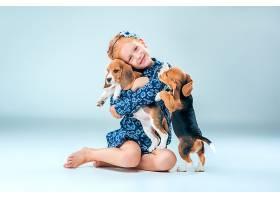 快乐的女孩和两只灰色背景上的小猎犬小狗_892380801