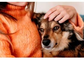 女人抚摸可爱的狗_1089194201