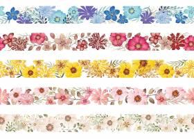 一套无缝的水彩画花朵边框孤立在白色背景_111884320101
