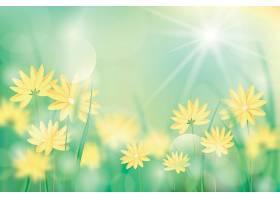 黄色的花朵逼真地模糊了春天的背景_122012400101