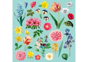 不同的花卉绘画套装_38538560101