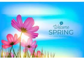 春天的背景天空和田野里的鲜花_67463660101