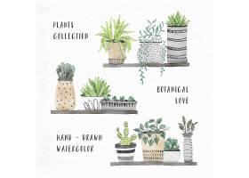 水彩画室内植物收藏_12181700101