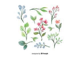 水彩画艺术花卉分集_55321360101