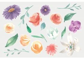 水彩画花卉套装_124592240101