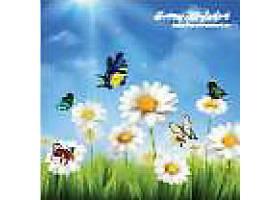 美丽的五颜六色的蝴蝶和带甘菊的绿草背景平_41862700101
