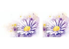 美丽的水彩雏菊背景_50737530102