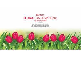 美丽的花卉背景_48518590101