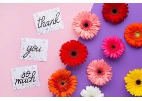 粉红色和紫色背景上的花朵和字母的俯视图