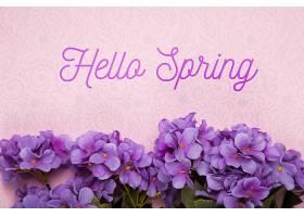 紫色福禄克花俯视图 紫色花卉背景
