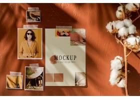 美丽的秋季棉花吊板_106047210103
