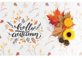 平坦的五颜六色的叶子和花朵_55517550102