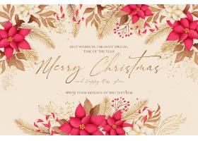 优雅的圣诞背景与美丽的自然_109684920102