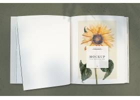 杂志样机上的向日葵留有空白处_37638670102