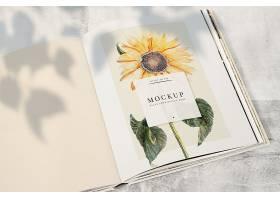 杂志样机上的向日葵留有空白处_41533630102