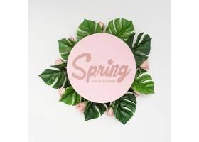 春季玫瑰花与怪兽植物的俯视图_70895830101