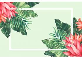 热带花卉边框有手绘的叶子和花朵_47936970102