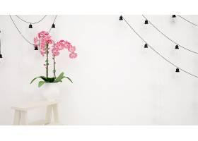 白色的墙上挂着灯具漂亮的粉红色装饰花_70453380102