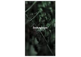 带有智能手机和花卉概念的Instagram帖子模_38579940102