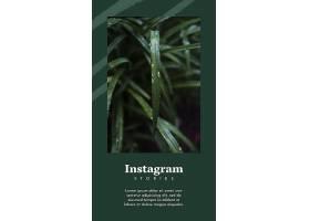 带有智能手机和花卉概念的Instagram帖子模_38579970102