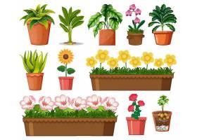在白色背景上隔离的盆栽中的一组不同的植物_127354760101