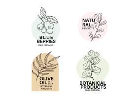 极简风格的自然商业徽标模板集合_6189095
