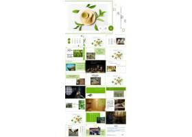 小清新风日本茶道文化介绍ppt模板产品介绍ppt,自我介绍ppt,企业
